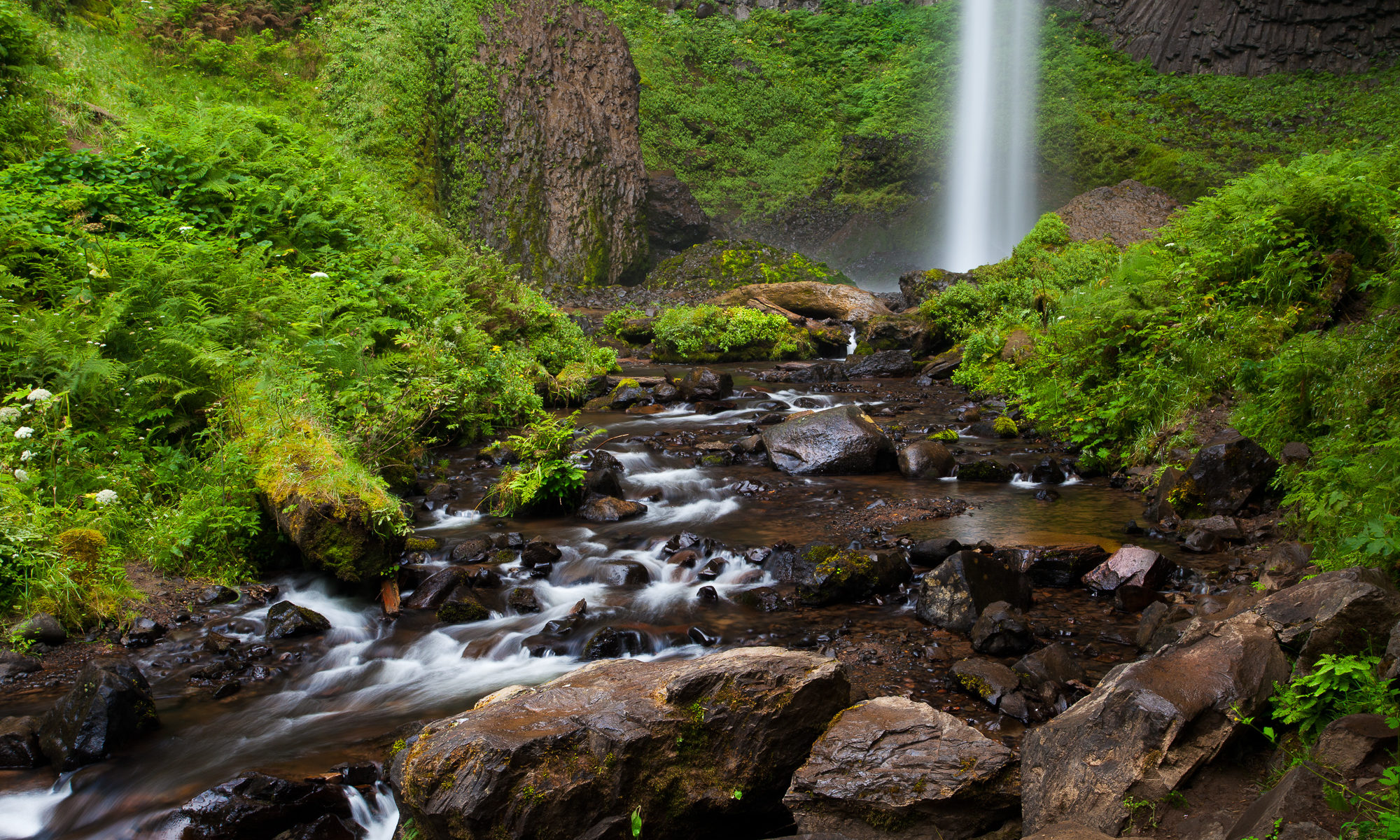 Latourell Falls drops straight down from an overhanging basalt cliff, Columbia River Gorge, Oregon