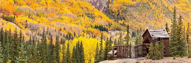One of the smaller mine structures of the Yankee Girl Silver Mine sits perched over a valley of colorful fall aspen, Ouray, Colorado