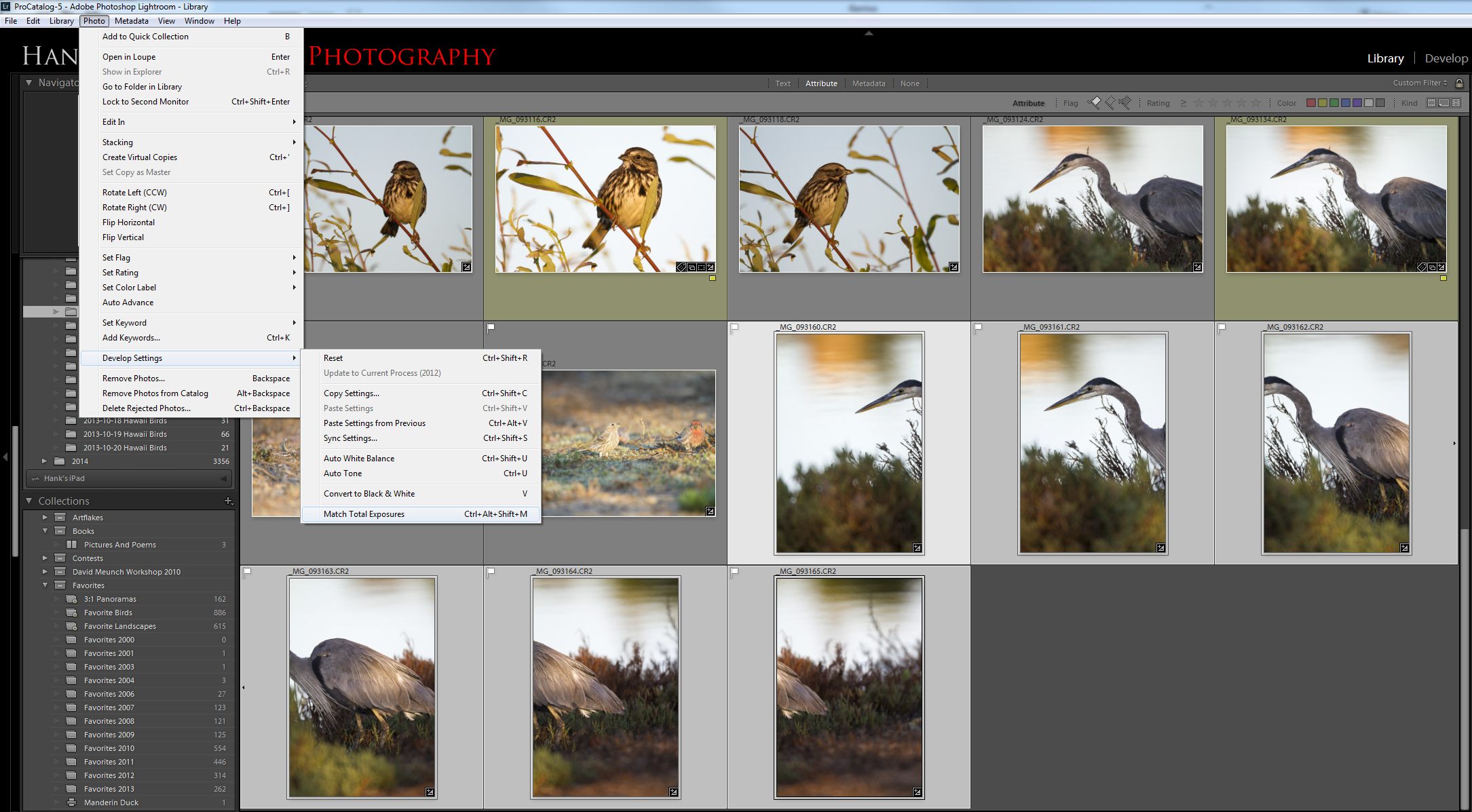 Use the Match Total Exposures feature to synchronize the exposures between frames that will make up a panorama.