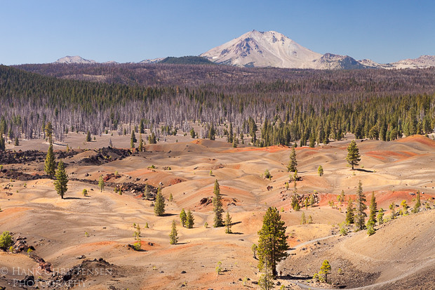 The Painted Dunes extend to the forest surrounding Mt. Lassen in Northern California.  These volcanic dunes were formed by a thousand year old cinder cone.