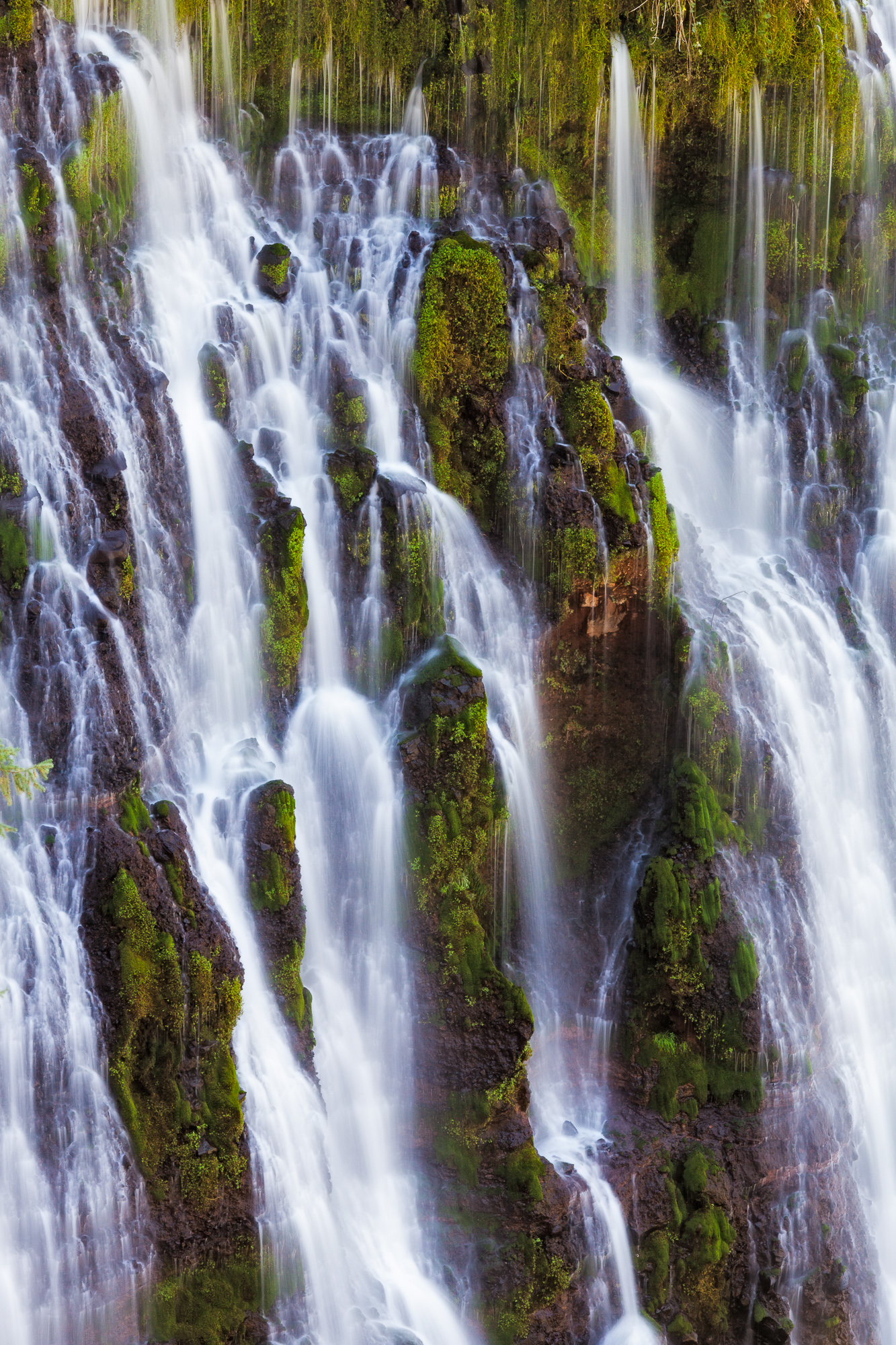 Burney Falls drops across a wide cliff into a pool below, creating a tree-lined grotto.